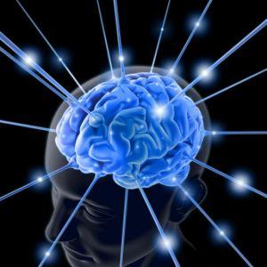 Название: neuro.jpg Просмотров: 4255  Размер: 16.7 Кб